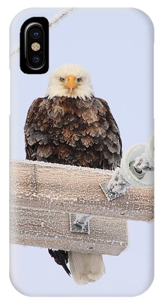 Looking At You IPhone Case