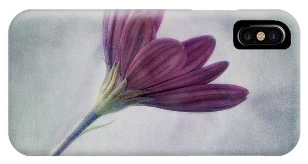 Floral iPhone Case - Looking For You by Priska Wettstein
