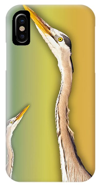 Avian iPhone Case - Looking Up 1 Of 2 by Betsy Knapp