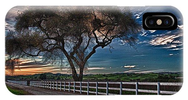 Los Alamos Vineyard Oak IPhone Case