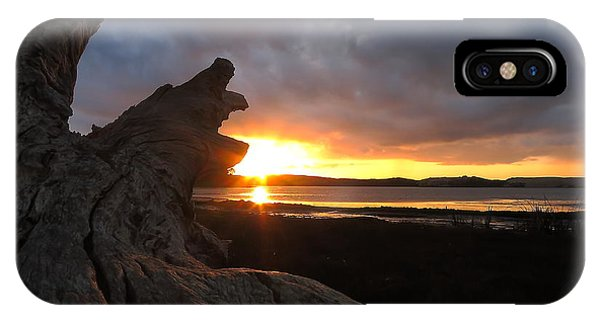 Los Osos Driftwood IPhone Case