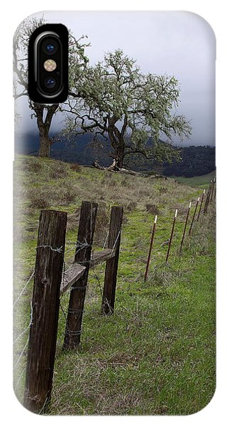 Los Padres National Forest IPhone Case