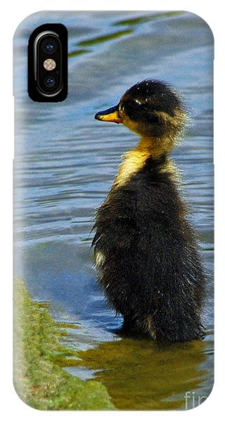 Lost Duckling IPhone Case