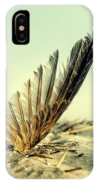 Lost Feather At The Beach IPhone Case