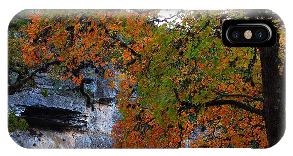 Fall Foliage At Lost Maples State Natural Area  IPhone Case