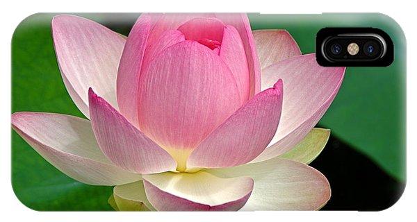 Lotus 7152010 IPhone Case