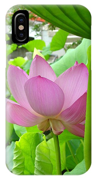 Lotus And Bridge IPhone Case