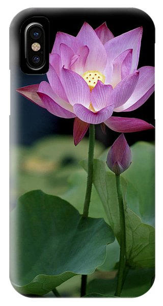 Lotus Blossom IPhone Case