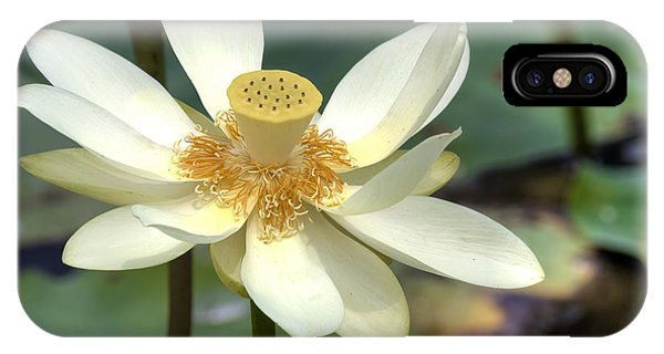 Lotus IPhone Case
