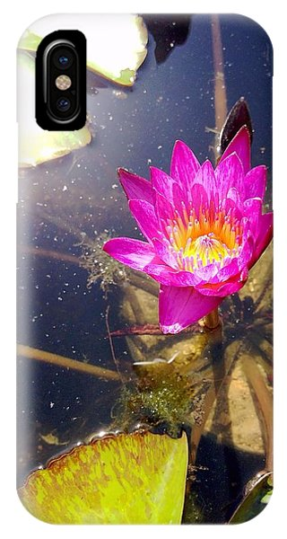 Lotus Day IPhone Case