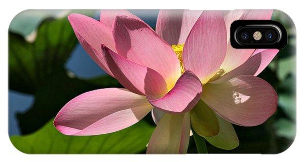 Lotus - Flowers IPhone Case