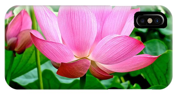 Lotus Heaven - 68 IPhone Case
