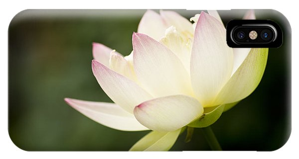 IPhone Case featuring the photograph Lotus by Priya Ghose
