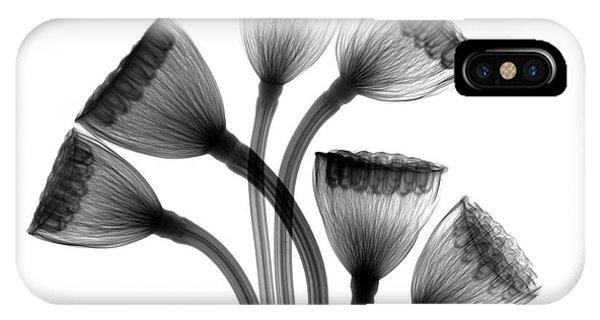 Lotus Seedheads Phone Case by Albert Koetsier X-ray