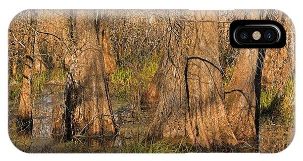 Louisiana Atchafalaya Basin IPhone Case