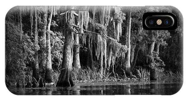 Cypress iPhone Case - Louisiana Bayou by Mountain Dreams