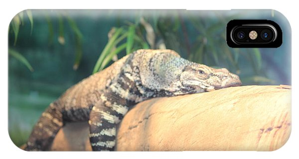 Lounging Lizard IPhone Case