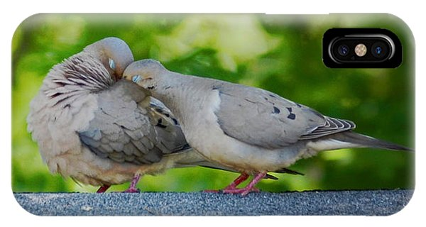 Love Doves  IPhone Case