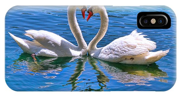 Love For Lauren On Lake Eola By Diana Sainz IPhone Case