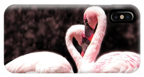 Love Of The Flamingos IPhone Case