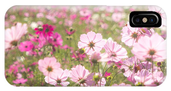 Lovely Backlit Pink And Fuchsia Cosmos Flower Field IPhone Case