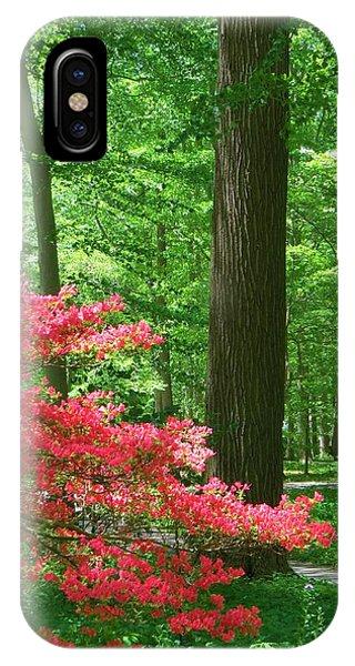 Lovely Forest Scene IPhone Case