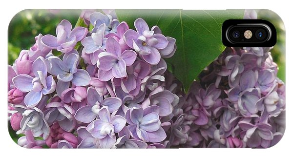 Lovely Luscious Lilacs IPhone Case