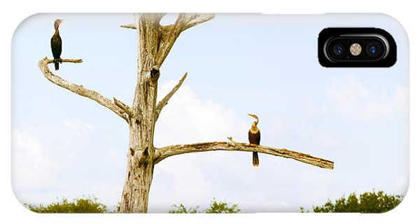Boynton iPhone Case - Low Angle View Of Cormorants by Panoramic Images