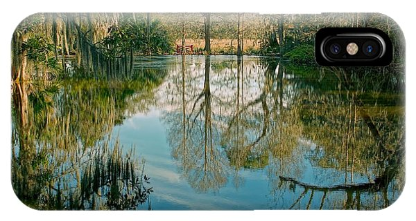 Low Country Swamp IPhone Case