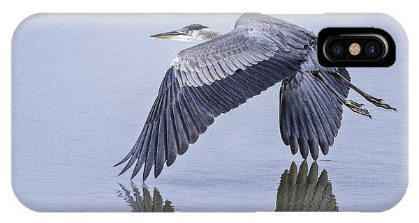 Low Flying Heron IPhone Case