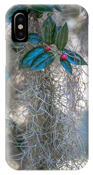 Grenn iPhone Case - Lowcountry Style Spanish Moss  by Dale Powell