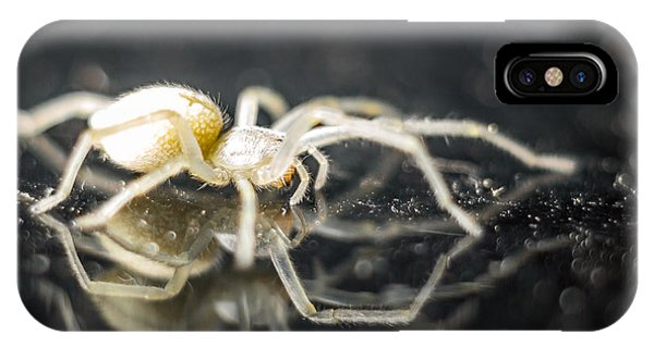 Luminous Spider Phone Case by Carl Engman