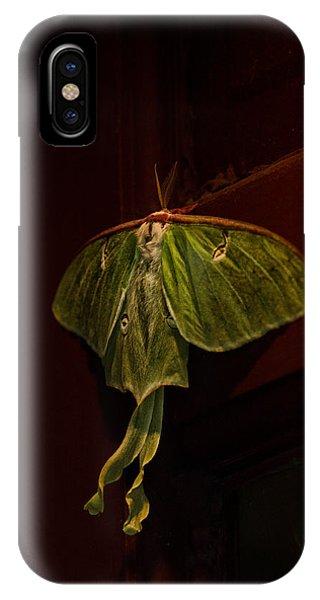 Moth iPhone Case - Luna At My Door by Susan Capuano