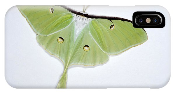 Pterygota iPhone Case - Luna Moth by Scott Camazine