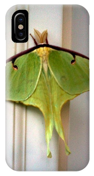 Analogous Color iPhone Case - Luna Moth by Stacy C Bottoms