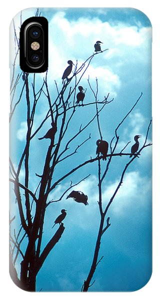 Lunch Crowd IPhone Case