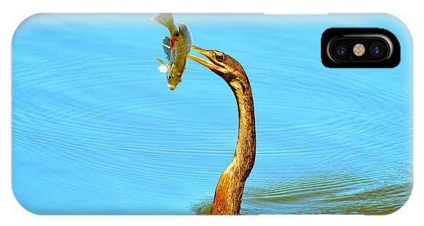 Anhinga iPhone Case - Lunch On The Spear by Deborah Benoit