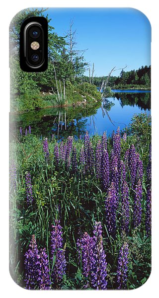Lupin And Lake-v IPhone Case