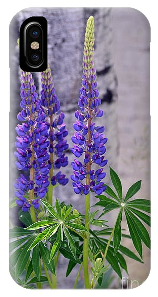 IPhone Case featuring the photograph Lupine by Dorrene BrownButterfield