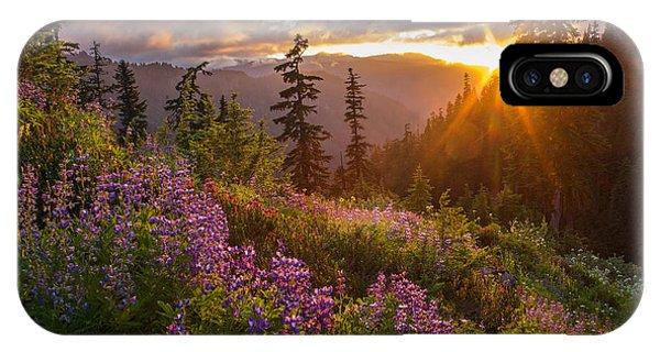 Lupine Meadows Sunstar IPhone Case
