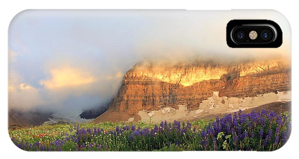 Lupine Wildflowers On Mount Timpanogos IPhone Case