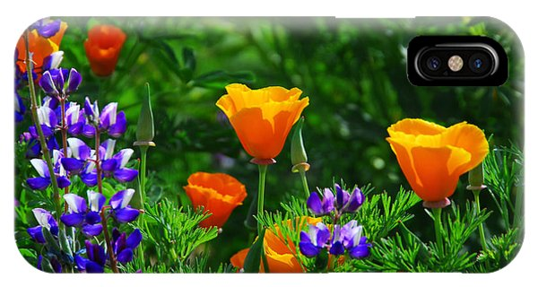 Lupines And Poppies IPhone Case