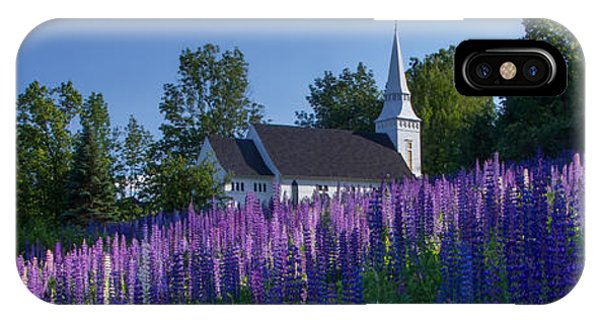 Lupines At St. Matthews In Sugar Hill IPhone Case