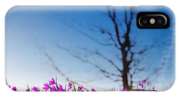 Grass Widows In Bloom IPhone Case