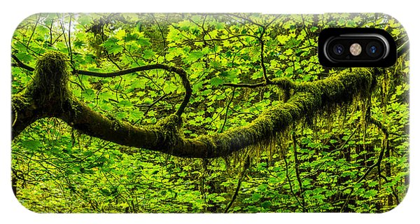 Branch iPhone Case - Lush by Chad Dutson
