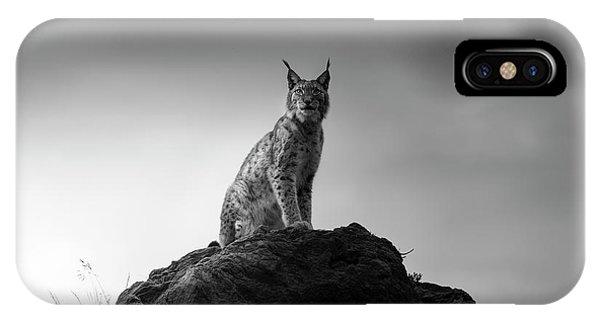 Lynx iPhone Case - Lynx Drama. by Sergio Saavedra Ruiz