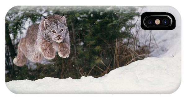 Lynx iPhone Case - Lynx Leaping by William Ervin/science Photo Library