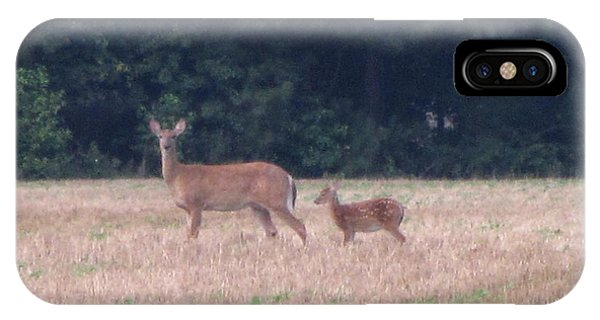 Mable The Female Deer With Harriet The Baby Fawn Phone Case by Debbie Nester