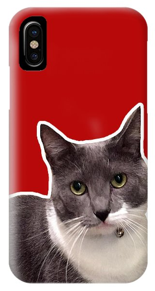 Cats iPhone Case - Mac Attack-custom Order by Linda Woods
