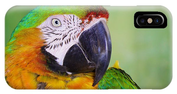 IPhone Case featuring the photograph Macaw - Ara by Nature and Wildlife Photography